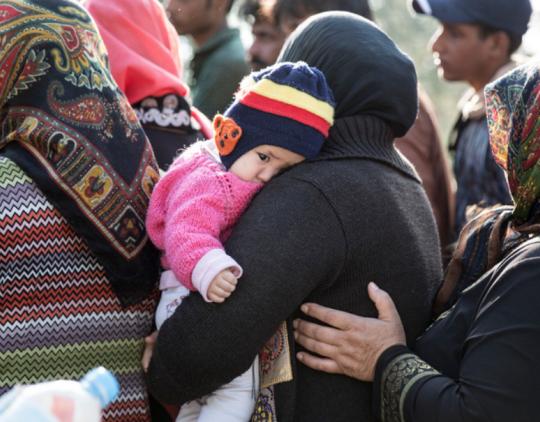 Informacijos dėl savanoriško grįžimo platinimas (ryšio su neteisėtais migrantais palaikymas) – 2015 m. (EN)