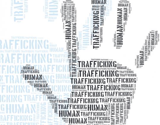 Prekybos žmonėmis aukų nustatymas, vykdant tarptautinės apsaugos ir priverstinio grąžinimo procedūras - 2014 m. (EN)