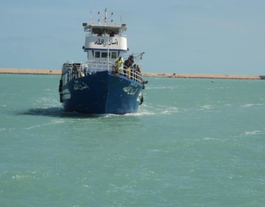 Glausta apžvalga dėl pranešimo apie migrantų judėjimą Viduržemio jūra – 2015 m. (EN)